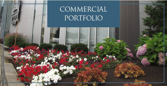 Commercial Services Portfolio