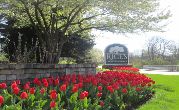 Rice's Landscaping History