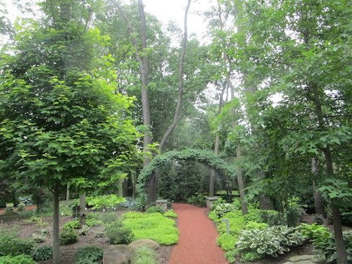 Discover the beauty of your garden with winding paths vibrant outdoor space with a winding path