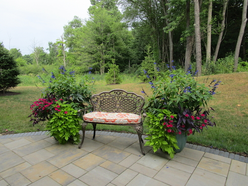 Seasonal landscape colors featured in planters framing a bench on a patio